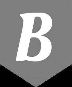 Bagsology